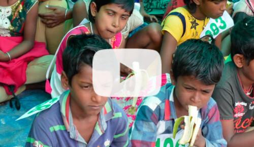 Desayunos escolares en Sunderbans Video