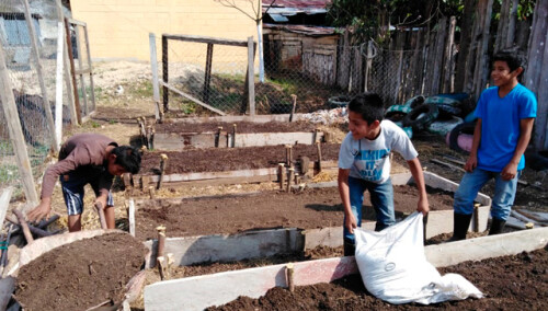 765756825619926805-guatemala-huertos-escolares.jpg
